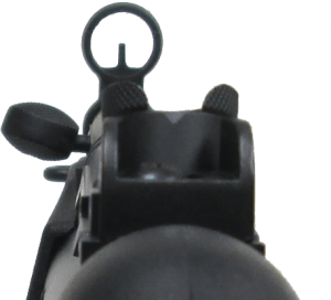 A4 Iron Sight